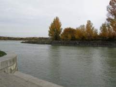 03_tip of the donauinsel at nussdorf.JPG
